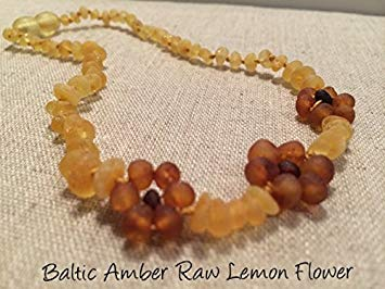 Raw Unpolished 13 Inch Baltic Amber Teething Necklace Teething and Growing Pain Cramps